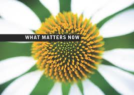 what matters now seth godin